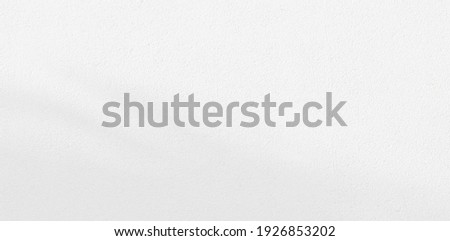 Abstract Shadow. blur background. gray leaves that reflect concrete walls on a white wall surface for blurred backgrounds and monochrome wallpapers.