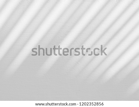 abstract shadow of palm leaves on white concrete wall  #1202352856