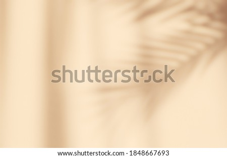 Abstract silhouette shadow beige background of natural leaves tree branch falling on wall. Transparent blurry shadow of tropical leaves morning sun light.
