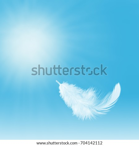 Abstract single white feather falling in the sky