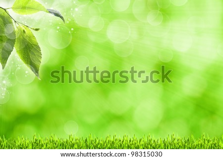 abstract spring backgrounds with defocused bokeh and sun beams