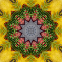 abstract square background of autumn pattern of a kaleidoscope. Pink yellow green grey background fractal mandala. abstract kaleidoscopic arabesque. geometrical ornament pattern