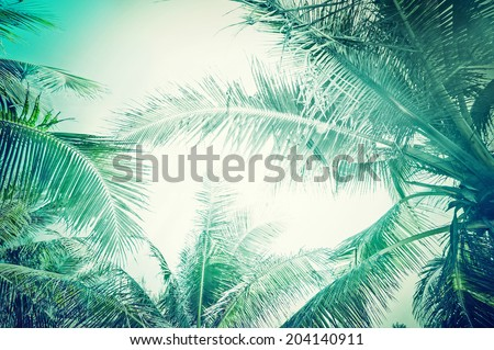 abstract summer background in...