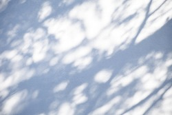Abstract summer background with shadows and sunspots on a white textured wall
