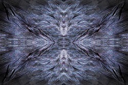 Abstract symmetric pattern of colorful feathers of wild duck as background close-up. Ornamental surreal tracery of bird feathers. The image with mirror effect.