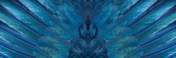Abstract symmetric pattern of colorful iridescent feathers of magpie close-up as background. Ornamental surreal tracery of bird feathers. The texture of the wing feathers. The image with mirror effect