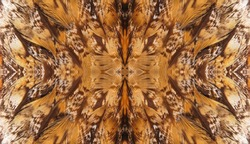 Abstract symmetric pattern of feathers of owls close-up as background. The texture of the wing feathers of the owl. Macro of the brown and yellow feathers of a owl. The image with mirror effect.