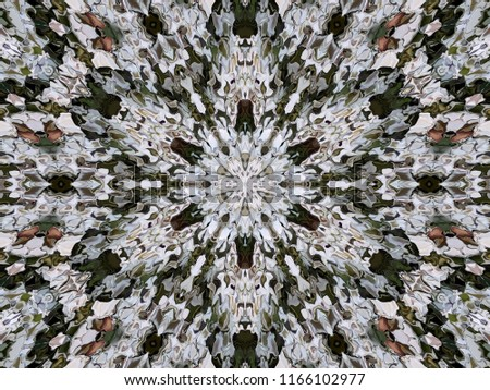 Abstract symmetrical six-directional ornamental pattern of modified spread image of white flowers Alyssum. Six directional ornamental fantasy pattern in the natural colors of alyssum flowers.
