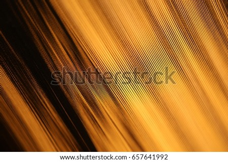 Abstract Texture #657641992