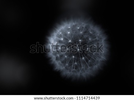 Abstract texture, light and structure of a dandelion plant, looking like a planet.