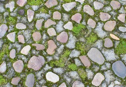 Abstract texture of stones, moss and grass. Cobbled floor