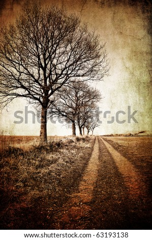 abstract textured image of winter trees and a farm track for a vintage look