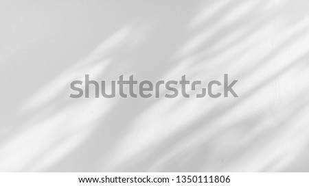 Abstract The gray background shadows of natural leaves that reflect the concrete walls, the fallen branches on the white wall surface for the background and the monochrome wallpaper. Foto stock ©