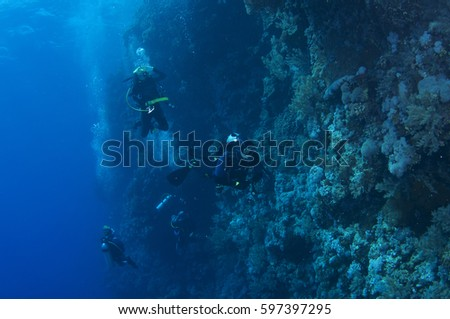 Abstract underwater scene of Red sea, Egypt. #597397295