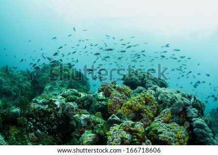 abstract underwater scene sun rays in deep blue sea