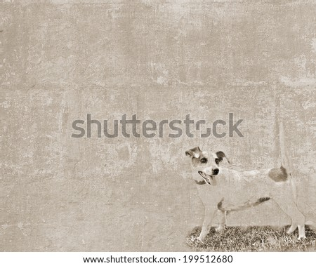 Abstract vintage textured background with a sketch of a small dog