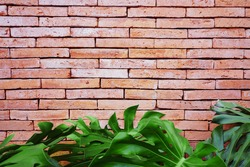 Abstract weathered textured red brick wall background with green plant. Brickwork stonework interior, rock old clean concrete grid uneven, horizontal architecture wallpaper.
