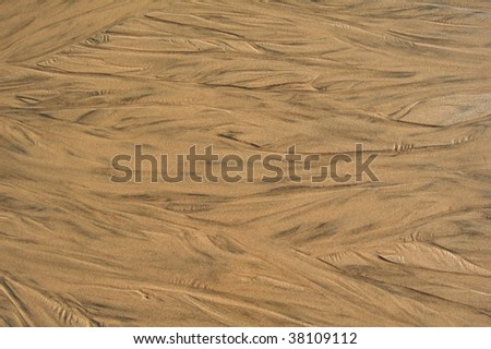 Abstract wet beach sand textured background