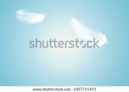 Abstract white feather floating in the air, on blue background