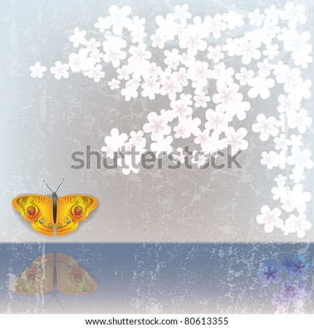 abstract white grunge background with flowers and butterfly