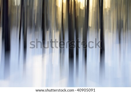 Abstract winter forest scene, intentional vertical blur done in-camera.