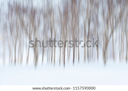 Abstract Wintry Background with Motion Blurred Birch Trees and Snow #1157590000