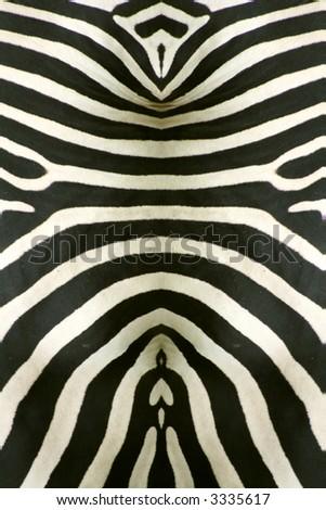 abstract zebra skin background