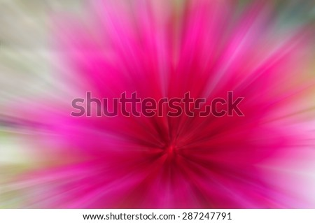 abstract  zoom line pink color background