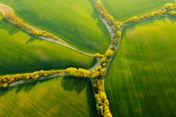 Abstraction agricultural area and green wavy fields in sunny day. Aerial photography, top view drone shot. Location place of Ukrainian agrarian region, Europe. Artistic wallpaper. Beauty of earth.