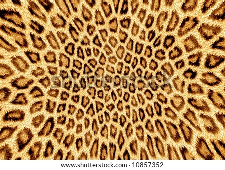 Leopard Background on Abstraction Leopard Background Stock Photo 10857352   Shutterstock
