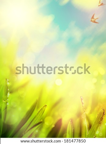 abstracts of natural spring background