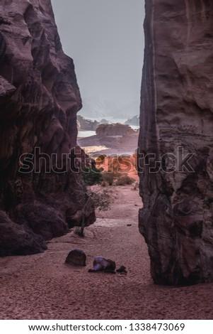 Abu Khashaba canyon in Wadi Rum - famous valley in Jordan #1338473069
