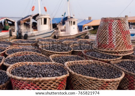 Shutterstock Acai berry (Euterpe oleracea), the small superfruit from the brazilian amazon, displayed in baskets, for sale in famous Ver-o-Peso public market in Belem do Para