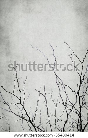 acanthaceous branch isolated on vintage background