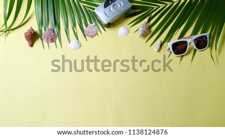 accessories traveler camera and sunglasses palm leaf on yellow background and blank space for text. top view concept summer background. out of focus. #1138124876