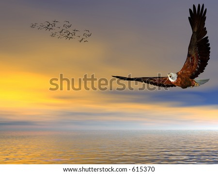 Accipitridae, the american bald eagle flying over the ocean, clear blue sky and puffy clouds and seagulls in the background, room provided for copy space.  3D render.