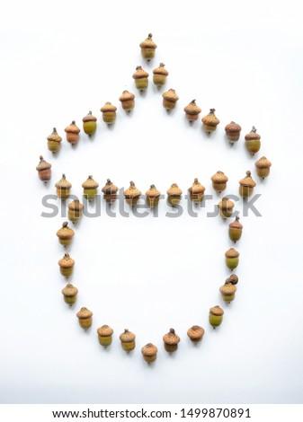 Acorn shape isolated make from oak acorns. Oak acorns on white background isolated. #1499870891