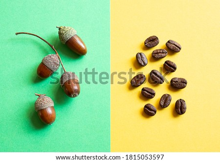 Acorns for acorns coffee and coffee beans on a yellow and green background. The concept of choosing between traditional coffee and a healthy drink with a coffee flavor and without caffeine.
