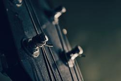 acoustic guitar head stock closeup
