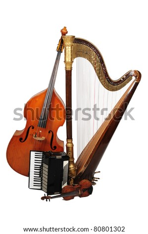 ACOUSTIC musical instrument