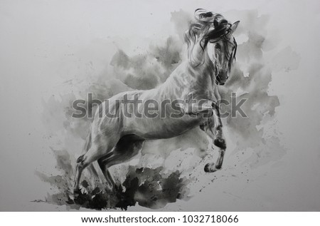 Acrylic painting of Horse on canvas , Draw animals , Beautiful portrait , realistic , emotions