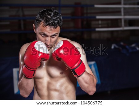 Action boxer gloves on in training attitude