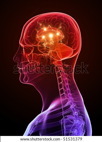 active brain - stock photo