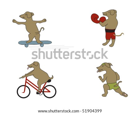 Active Dog in Various Keep Fit