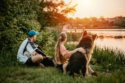 Active Family, fitness couple, Pet Love, Dog Training, best dog breeds for family. Young sports couple walking with two German Shepherd dogs outdoors in sunset summer park