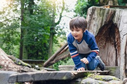 Active kid play balance on wooden beam in park, Little boy climbing on a wooden playground, Happy Child having fun playing outdoor in the park in spring
