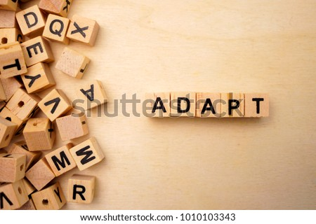 Adapt word cube on wood background