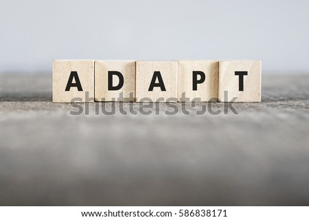 ADAPT word made with building blocks