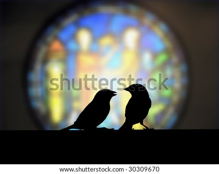 admonish, sparrow small talk in front of the church colorful window