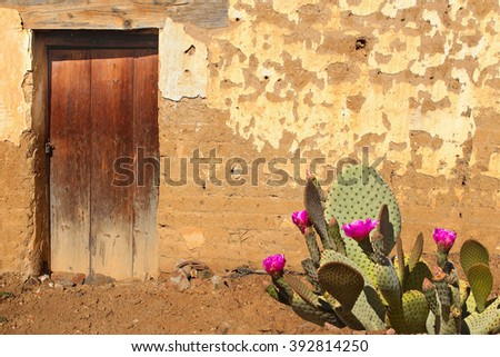 adobe wall and wooden door with ...